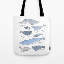 Whales Dolphins & Porpoises Tote Bag