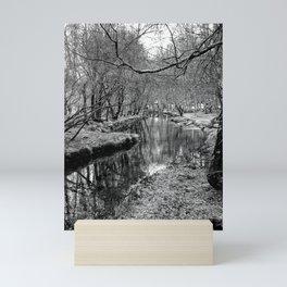 River Pathway - Black & White Mini Art Print
