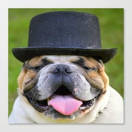 Silly Bulldog In Top Hat Canvas Print