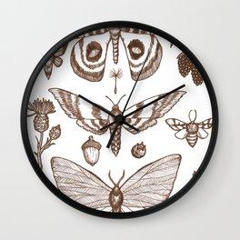 Natural History (Brown) Wall Clock
