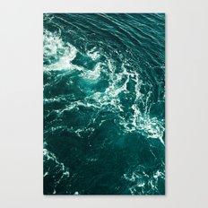 Voda Canvas Print