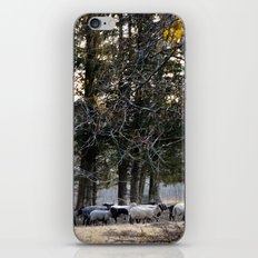 Lil Bo Peep's Forest Sheep iPhone & iPod Skin