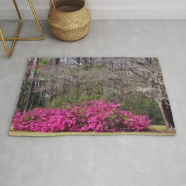 Beauty In The Woods Rug