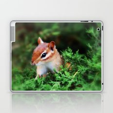 Chipmunk Laptop & iPad Skin