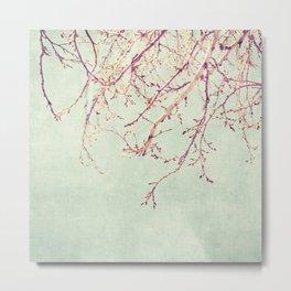 Chinese Spring Metal Print