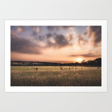 Animals Grazing Art Print