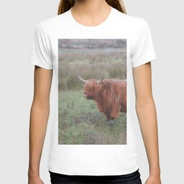 Heilan coo - Highlands cow T-shirt