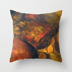 River #2 Throw Pillow