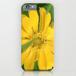 Lucious Yellow Zinnia Flower With Lush Leaves iPhone Case