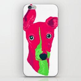 italian greyhound - wht iPhone Skin