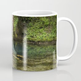 River spring in the forest Coffee Mug