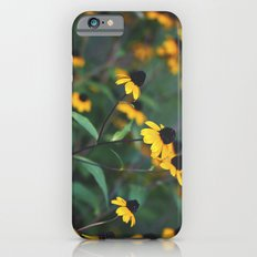 Don't Look Back iPhone 6s Slim Case