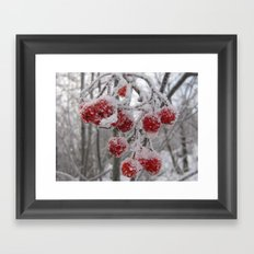 The Frost Framed Art Print
