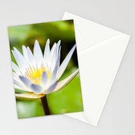 Single White Lotus Water Lily of Kauai, Hawaii Stationery Cards