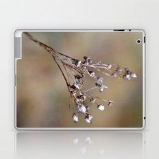 Germinating Laptop & iPad Skin