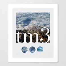 tm3 Canvas Print