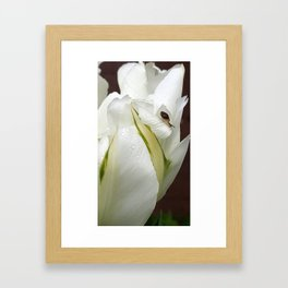Melancholy of slowness Framed Art Print