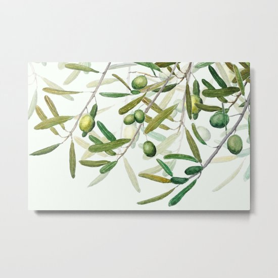 Green Olive watercolor painting Metal Print