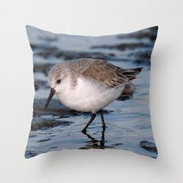 A Strolling Sanderling Throw Pillow