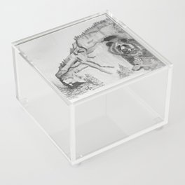 The Fairytale about the Wolf, Bear, and the Lion Acrylic Box