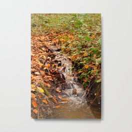 Country Stream Autumn Metal Print