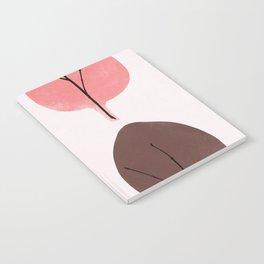 spring 1 Notebook