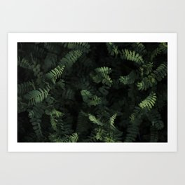 Just Leafy Art Print