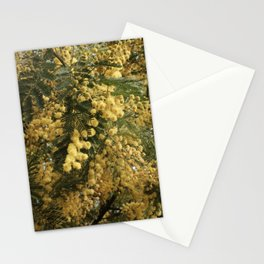 Nature marvels us with simple things Stationery Cards