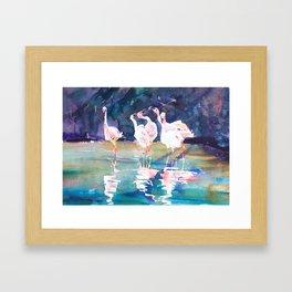 Flamingo Lake Framed Art Print