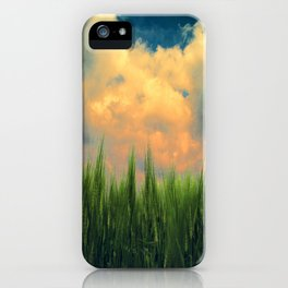 barley field iPhone Case