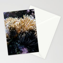Understated Anemone Stationery Cards