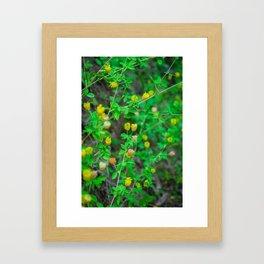 Bébé Fleur Framed Art Print
