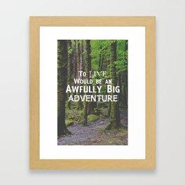 Peter Pan and Forrest Lands Framed Art Print