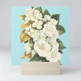 Siren Song Mini Art Print