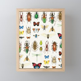 The Usual Suspects - insects on white Framed Mini Art Print