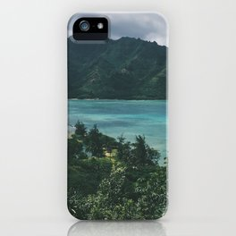 Crouching Lion iPhone Case