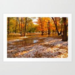 Mixed Seasons Art Print