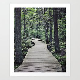 Boardwalk with natural arch Art Print