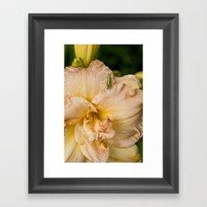 Angelic Grin - Daylily Framed Art Print
