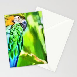 Blue and Gold Macaw Stationery Cards