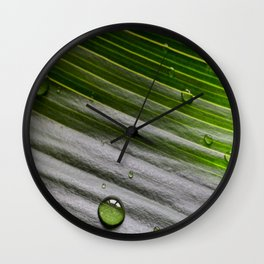 Close-up of green plant leaf with water drops Wall Clock