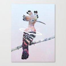 Hoopoe Canvas Print