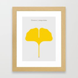 Ginkgo Leaf Framed Art Print