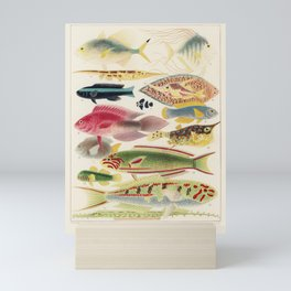 Great Barrier Reef Fishes from The Great Barrier Reef of Australia (1893) by William Saville-Kent (1 Mini Art Print