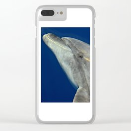 Making friends with a bottlenose dolphin Clear iPhone Case