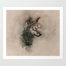 European Wolf Art Print