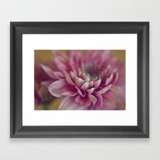 A Quiet Strength Framed Art Print