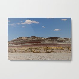 Blue Mesa Area - Petrified Forest Metal Print