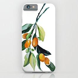 Kumquat may iPhone Case