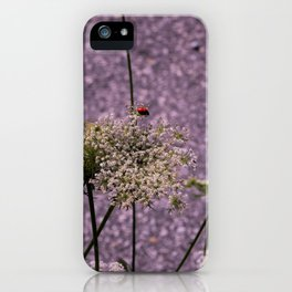 Seclusion iPhone Case